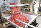 Global Aktiv: Agrana will durch eine Beteiligung in Algerien die globale Marktführerschaft bei Fruchtzubereitungen festigen.