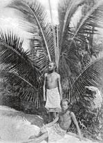 Kokovore August Engelhardt (stehend) verordnete sich und seinen Anhängern viel Sonne und eine strenge Kokosnussdiät