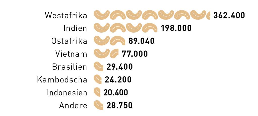 Nur ein Fünftel der rohen Cashewnuss ist verzehrbar, der Rest besteht aus steinharter Schale. Die Weltproduktion für geschälte Cashewnüsse liegt in der Saison 2018/2019 bei 830.000 Tonnen.