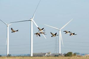 Energieeffiziente Wertschöpfungsketten sind das Ziel einer sogenannten integrierten Energiestrategie