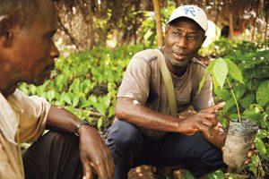 Fairtrade-Rohstoffe wie Kakao, Kaffee, Bananen und Baumwolle verzeichnen deutliche Zuwächse.