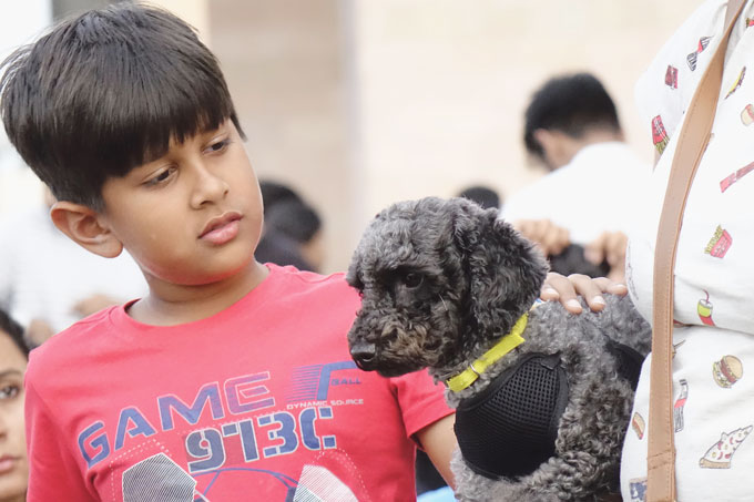 Pets in Asia: The pet market is also booming in India. Pictured: a boy with a puppy
