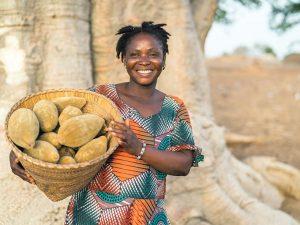 Baobab Sammlerin Ghana